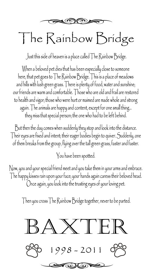 photo relating to Rainbow Bridge Poem Printable Version titled Rainbow Poem Around Throwing away A Pet dog