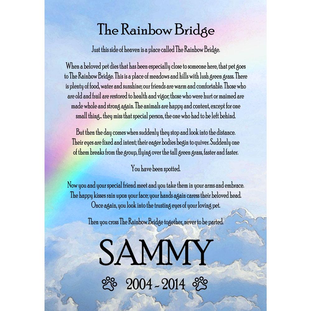 Rainbow Bridge Frame For Cats